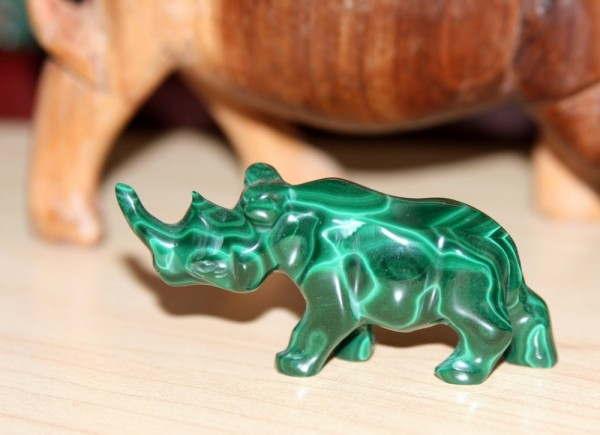 Green Rhino