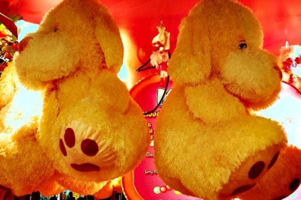 Yellow Bear Stuffed Toys at Star City