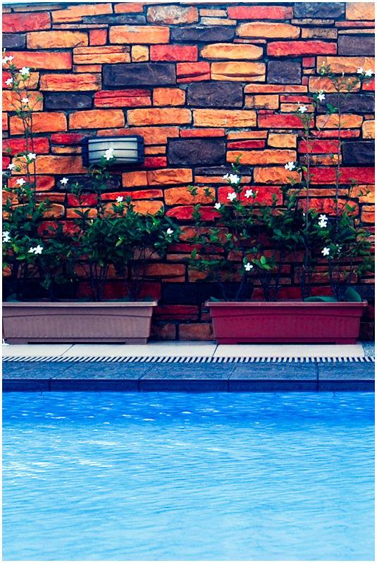 Plants Before Brick Walls Above Swimming Pool