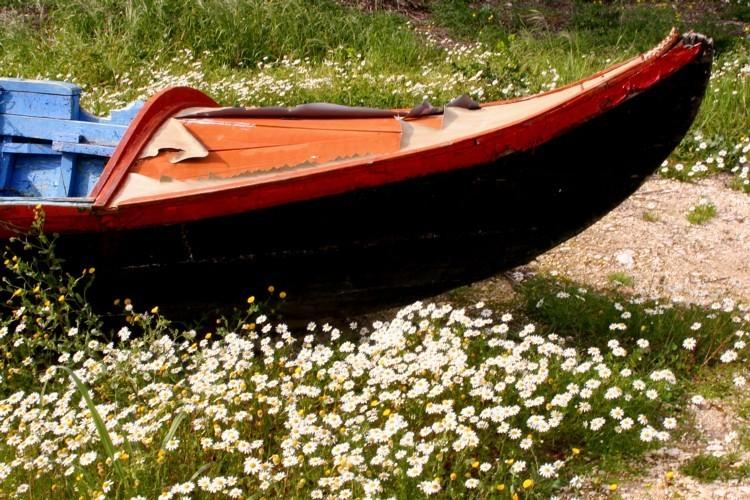 Navegando Mal-Me-Queres....