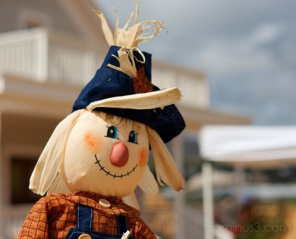 Scarecrow Protecting Pumpkins at Farm