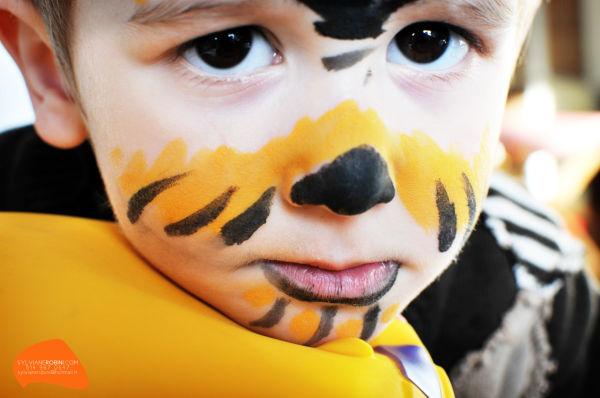 Tigre approximatif