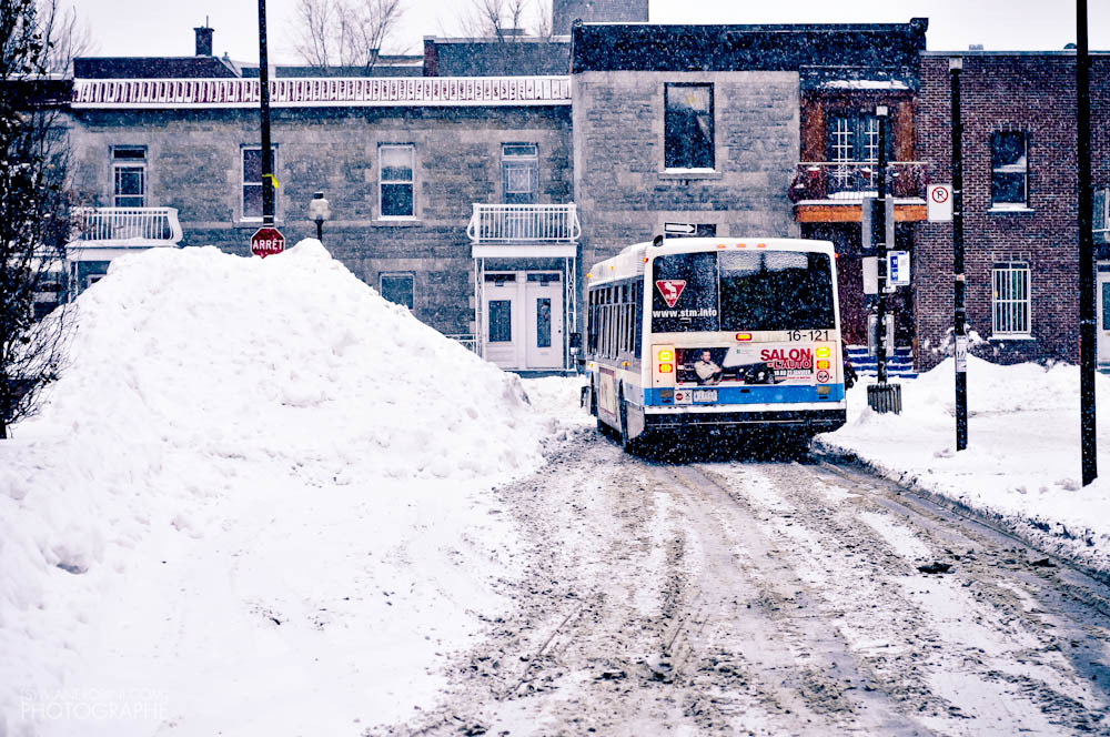 Neige vs autobus