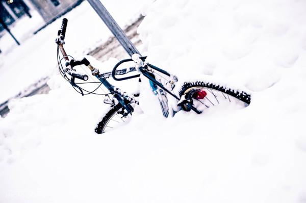 Pris dans la neige..