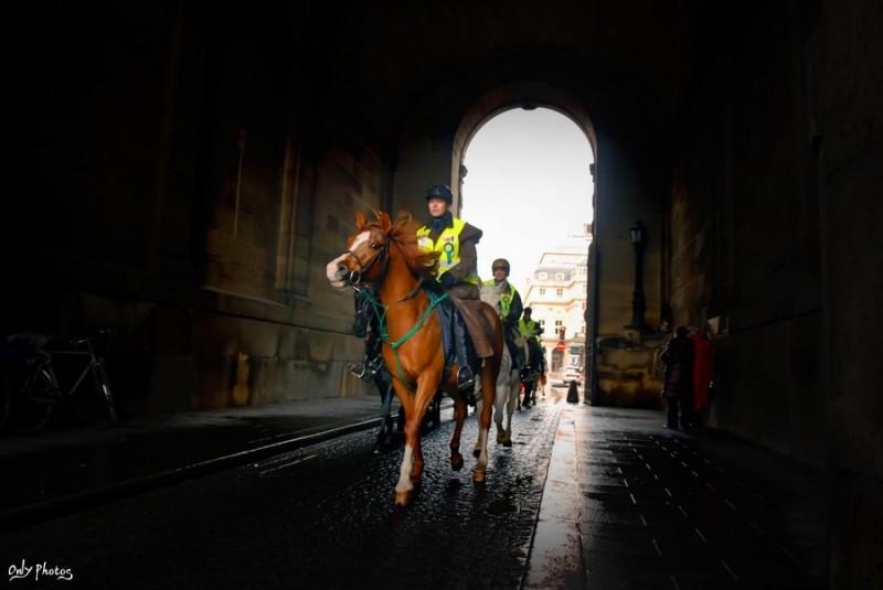 Défilé de chevaux à Paris