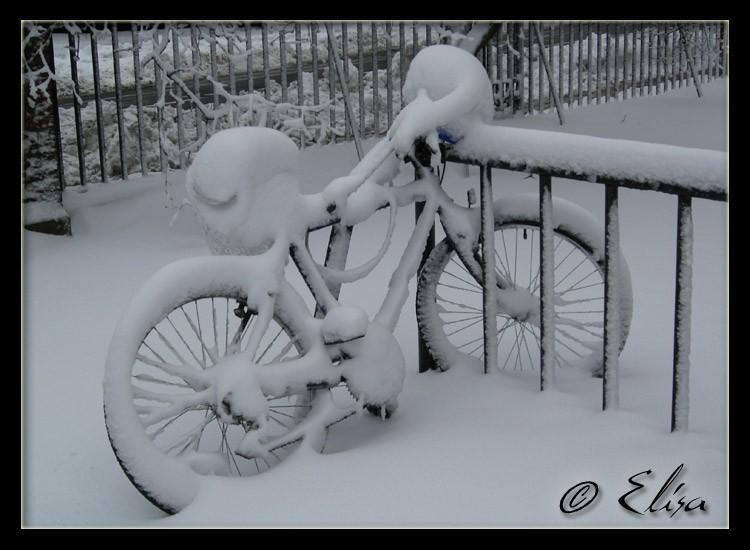 Back in Winterchusetts...