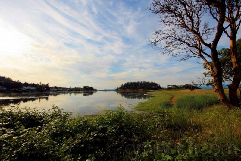 Piper's Lagoon