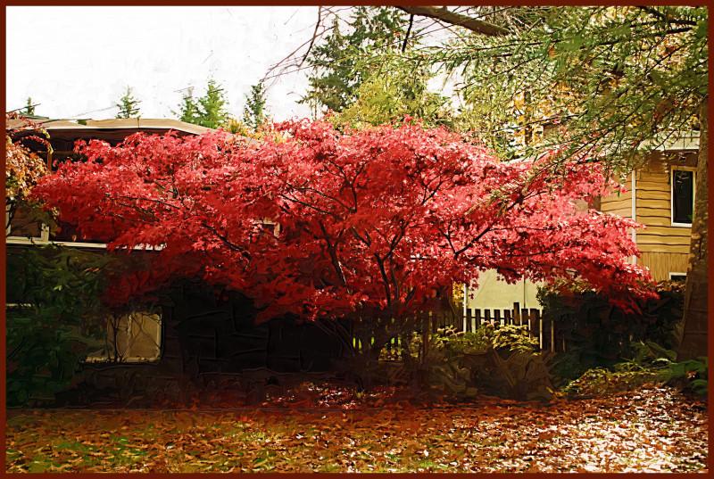 Painted trees iii