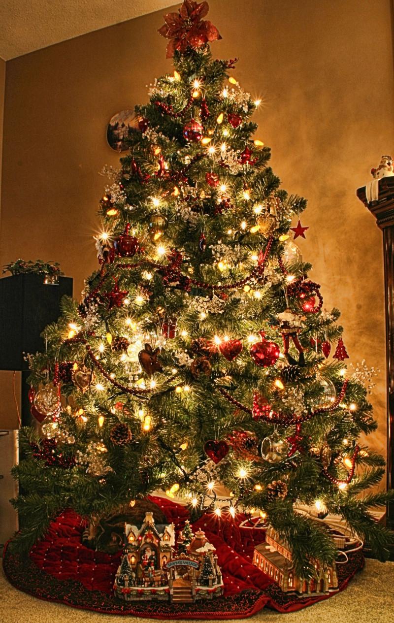 Christmas Tree - 2007