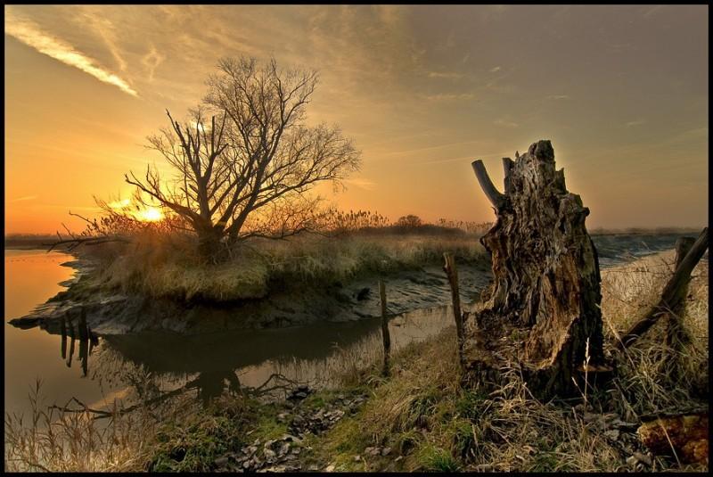 Les Marais de COUERON
