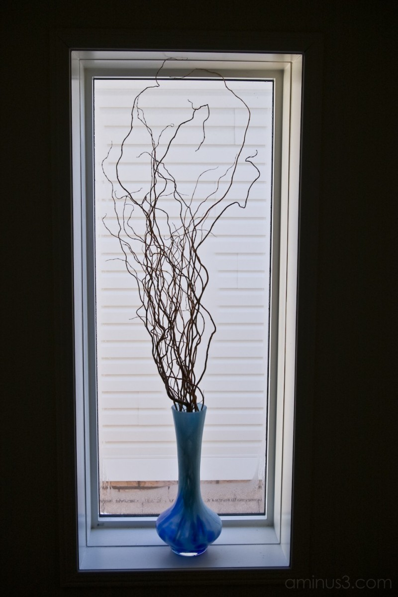 The blue vase in the window