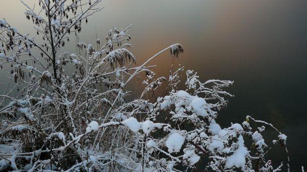 Chaudes couleurs d'hivers