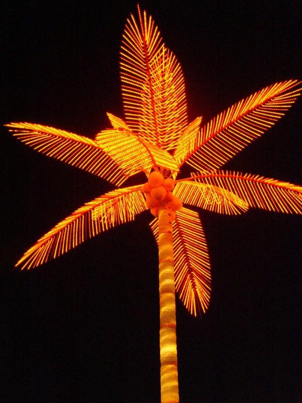 Electric Palm in Bandar Abbas