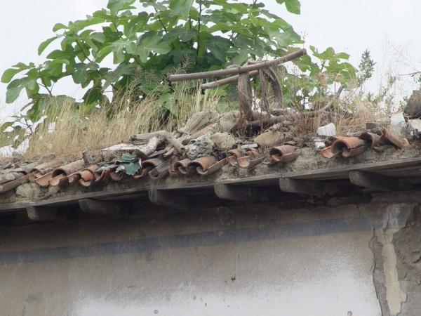 Roof(2) in Babolsar