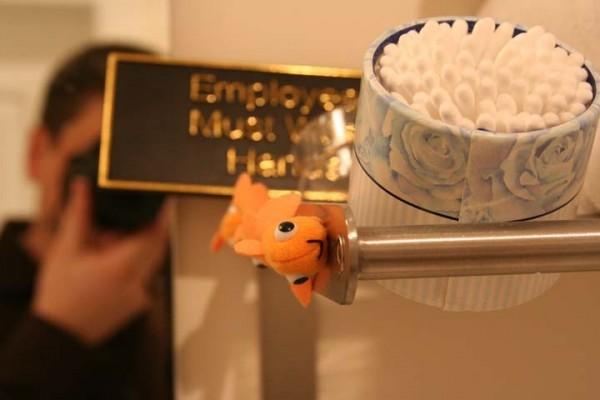 Cotton Swabs, Goldfish, Me