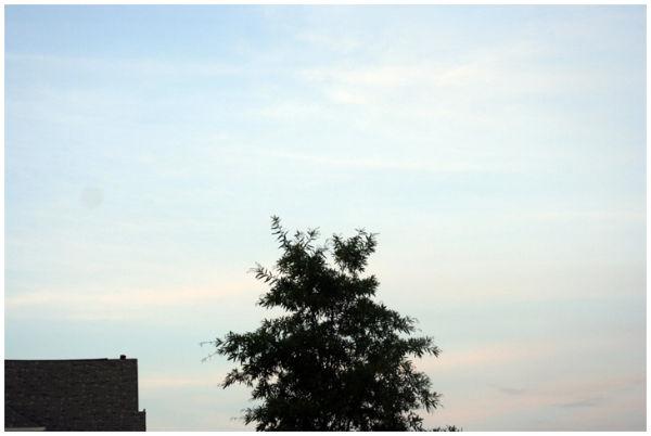 House, Tree, Sky