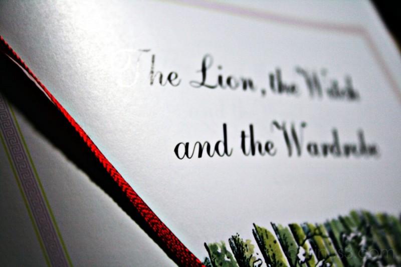 marca leon