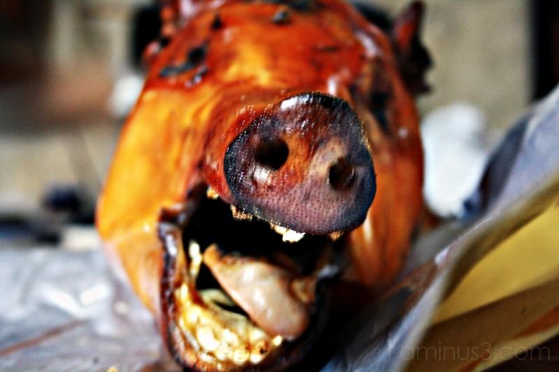 RIP Pig