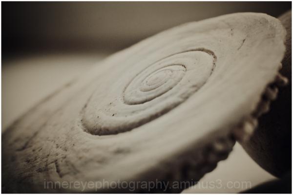 natures spiral