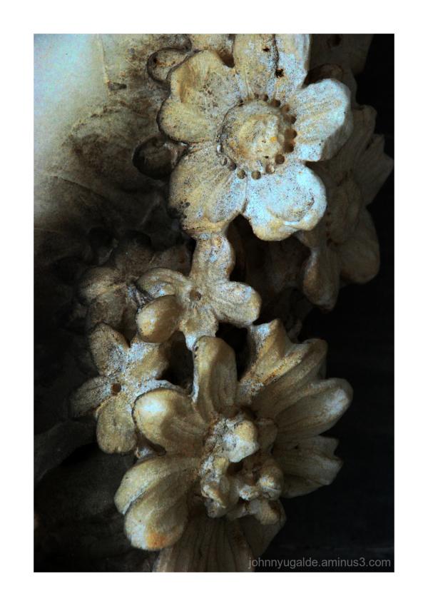 Flowers fron GYE Cemetery