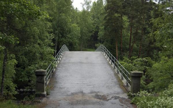 Aunessilta Bridge III