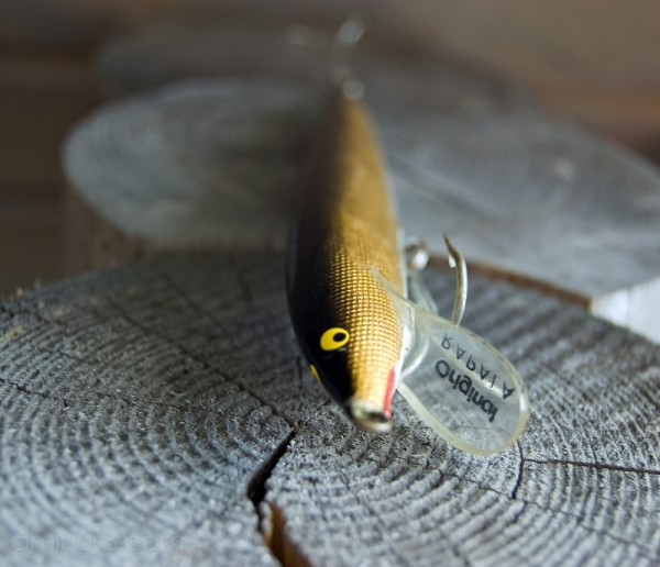 A Lure