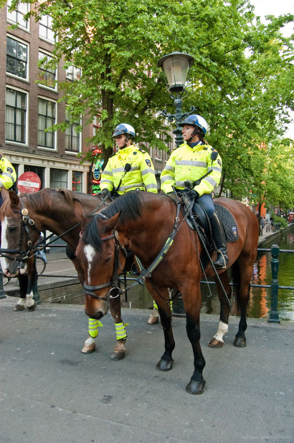 Police with the horse power