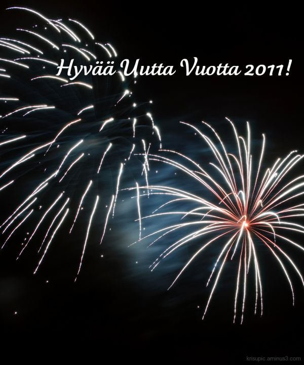 Happy New Year 2011!
