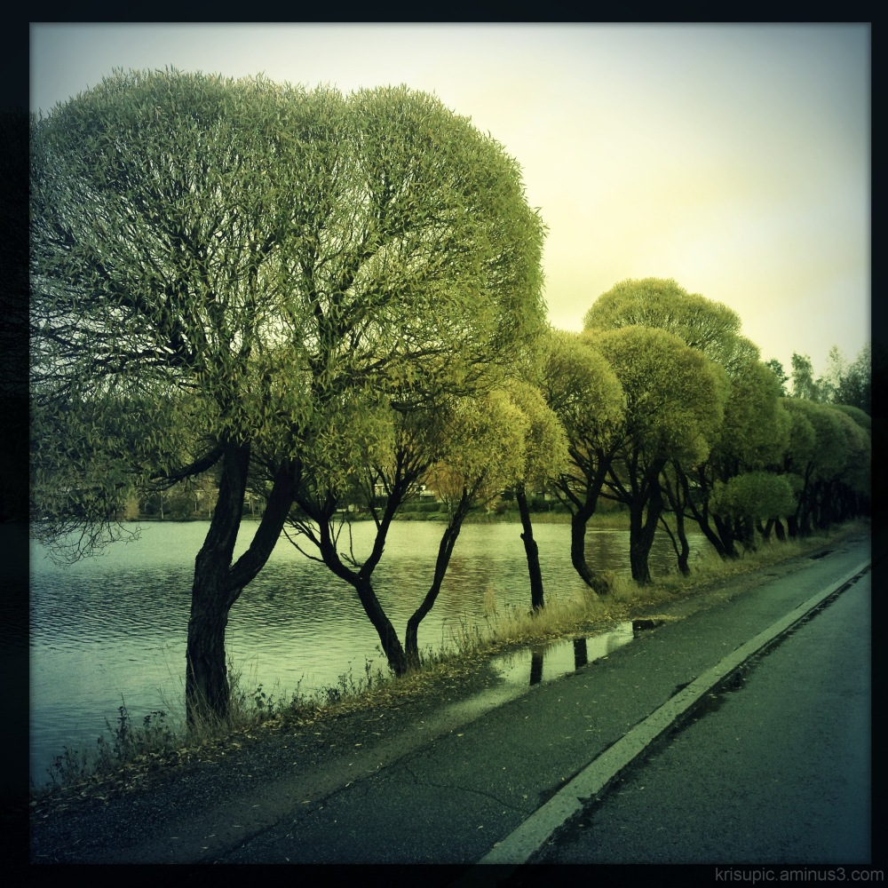 street by the lake