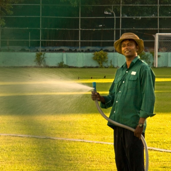 watering the field ...