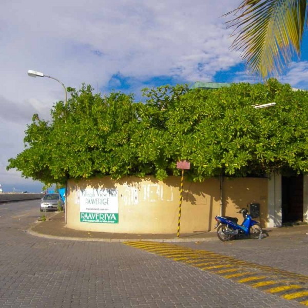 raaveriyaa restaurant at villingili view inn ...