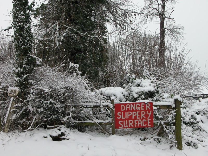 Snow Ludlow