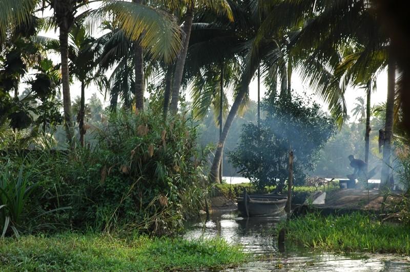 Backwater Kerela South India