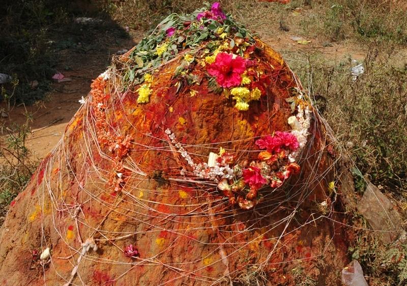 Termite Mound Snake Worship Bangalore Karnataka