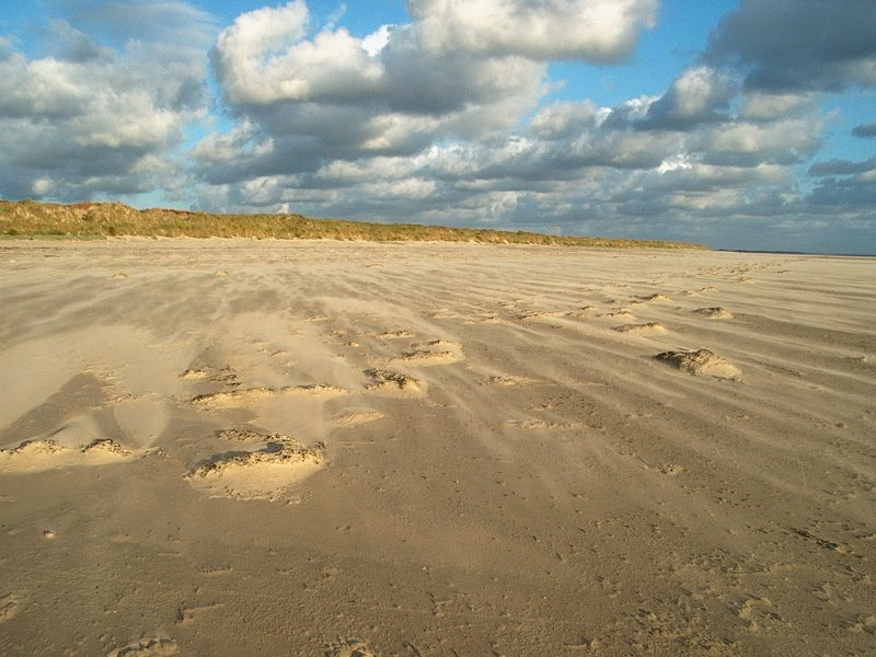 Normandy Beach France