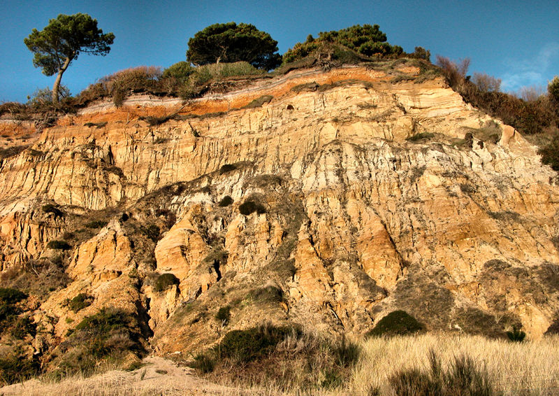 Cliff Dorset UK