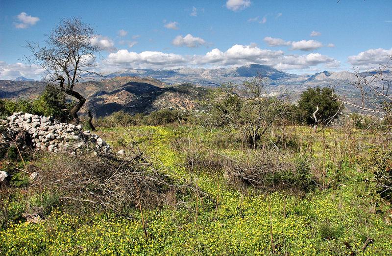 Mazmullar Axarquia Andalusia Spain