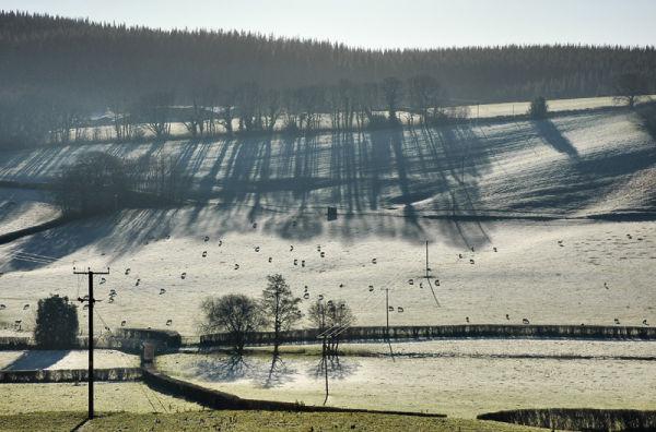 Frost Presteigne Powys Wales