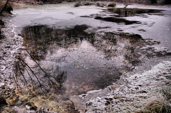 Pond Mortimer's Forest Ludlow Shropshire UK