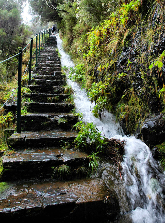 Rabacal Levada 25 Fontes Madeira
