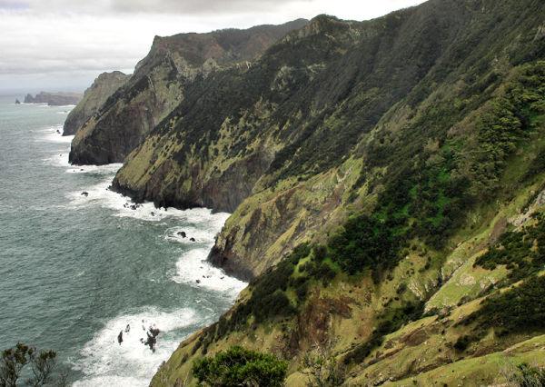 Cova das Pedras Madeira