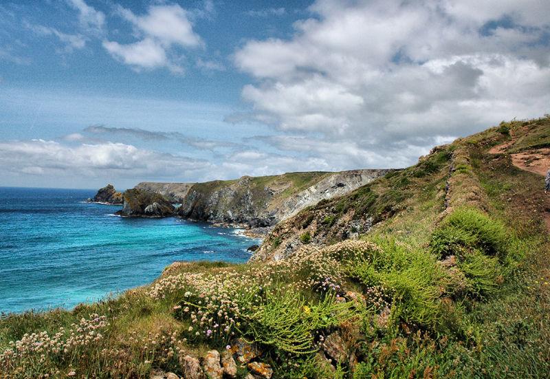Lizard Cornwall UK