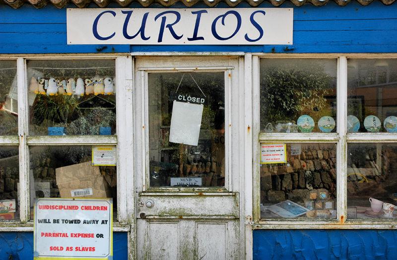 Curios Lizard Cornwall UK