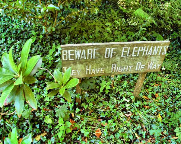 Elephant Garden sign Cornwall UK