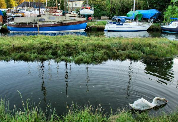 Gweek Cornwall UK