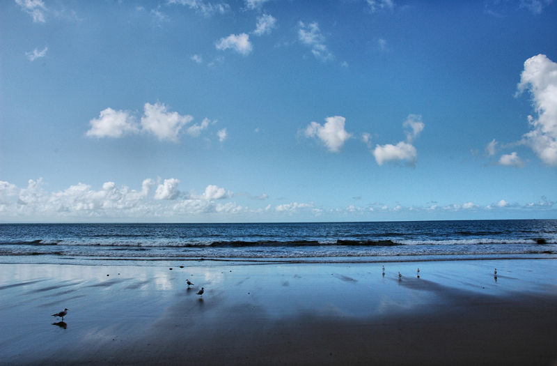 Caswell Bay Gower Wales