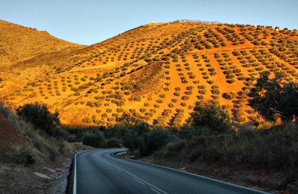 Colmenar Red Axarquia Spain