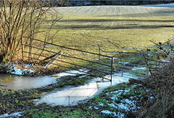 reflection fields Gate Ludlow Shropshire UK