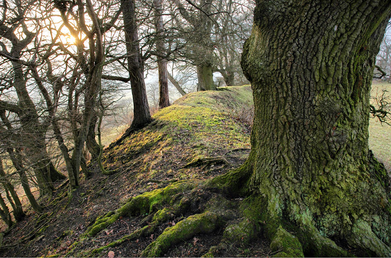 Iron Age Fort Caynham Shropshire UK