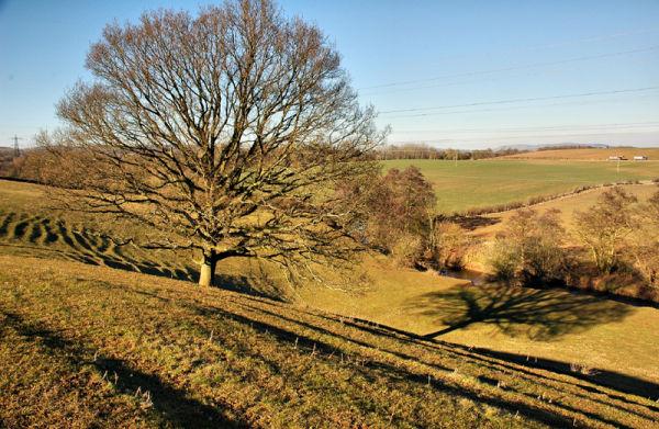 Ridge Furrow ploughing Caynham Shropshire UK